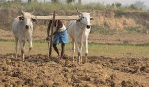 केन्द्र सरकार के तेवर नहीं पड़े नरम, किसान भी अपनी मांग परअड़े